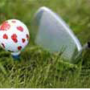 Golf & Sportmanagement